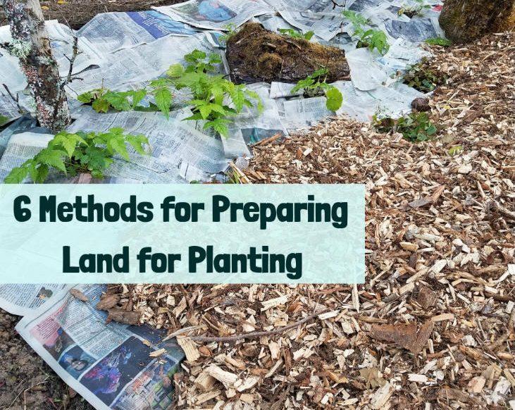 6 Methods for Preparing Land for Planting