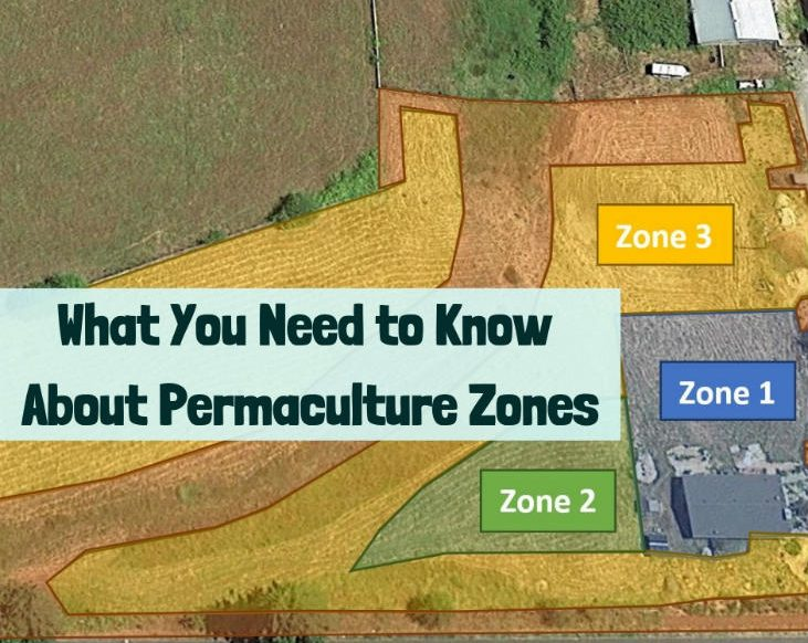 Getting started with permaculture zones