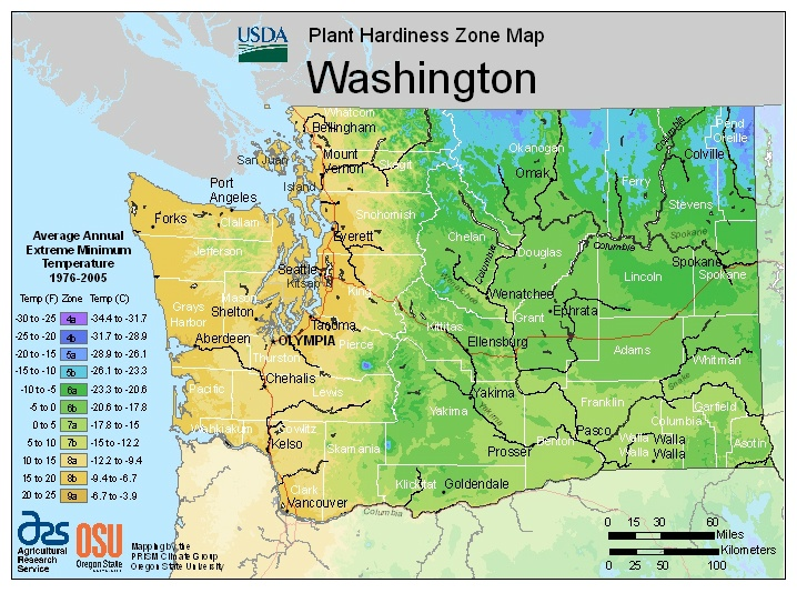 Identify your USDA plant hardiness zone before you plant your perennial vegetables