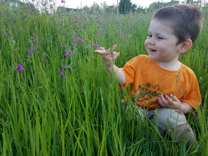 Rewilding your homestead can inspire children.