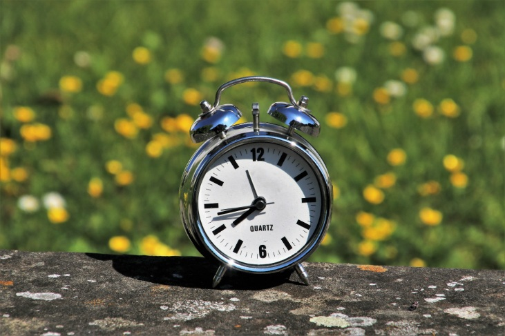 How much time do you have to start a homestead?