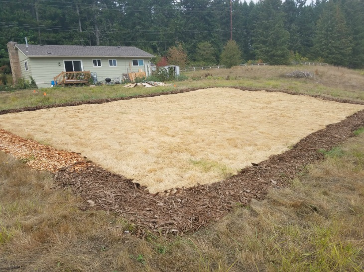 Results of preparing land with solarizing