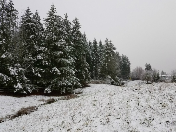 When you start your homestead know your climate