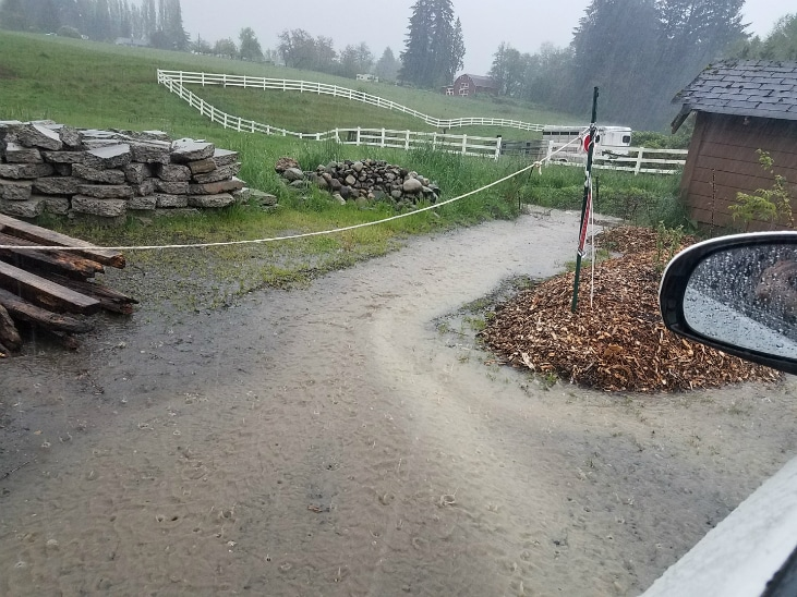When you start a homestead make sure to make use of water runoff