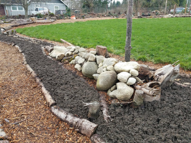 Create habitat features next to your garden