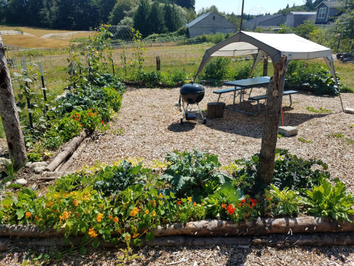 Pick a location for your new garden that is sunny