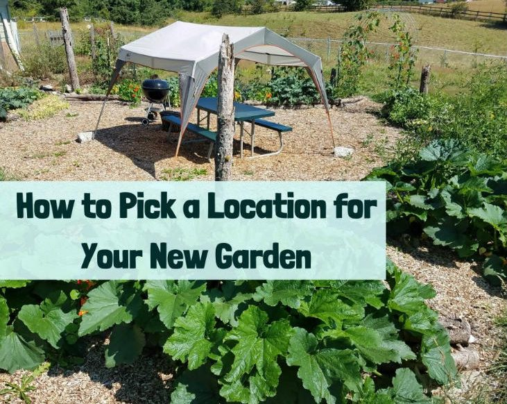 Pick a location for your new garden