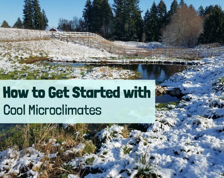 Get started with cool microclimates