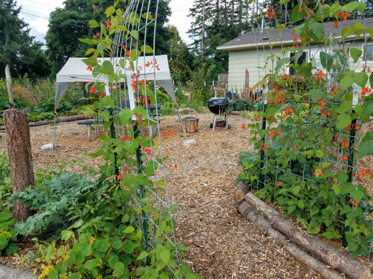 Get the most from warm microclimates