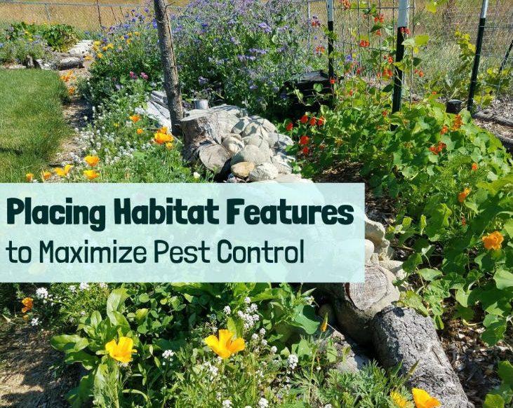 Placing habitat features to maximize pest control