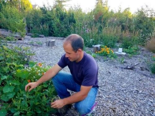 I'm Daron -- the gardener and ecologist behind Wild Homesteading