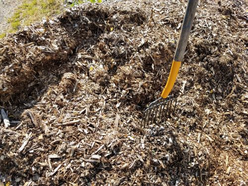 Build healthy soil with mulch