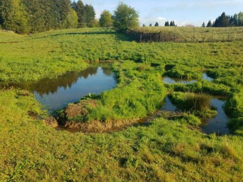 Work with your land to moderate climate extremes