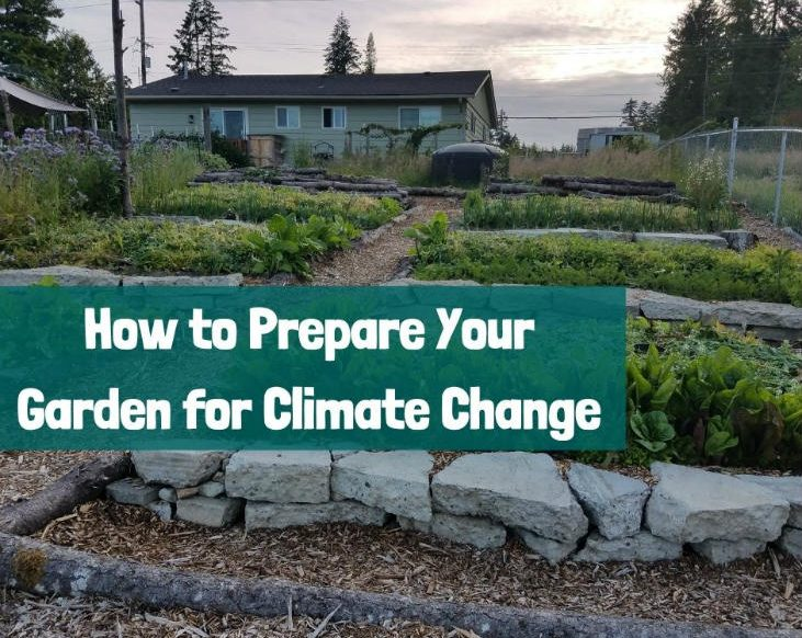 Prepare your garden for climate change