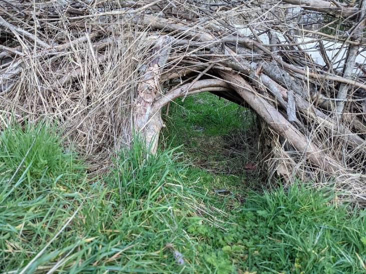 Wildlife corridors can be built under deer fences to let other wildlife through