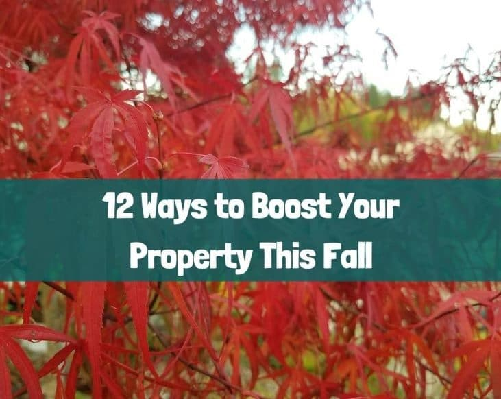 Fall is the time to boost your property