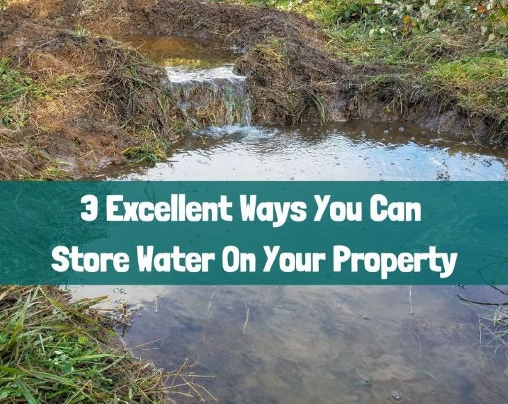 3 excellent ways you can store water