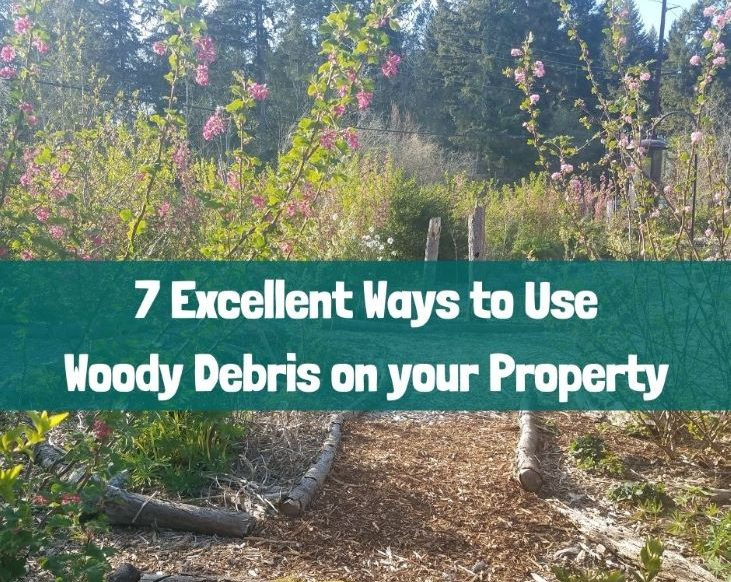 Use woody debris to make your place come alive