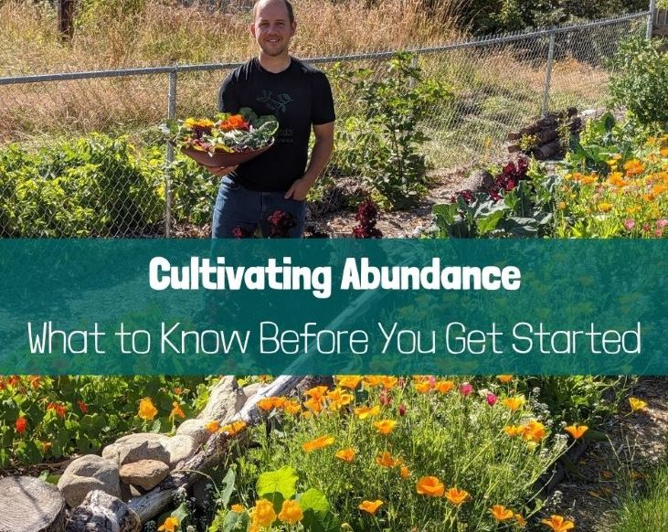 Cultivating Abundance - What to know before you get started