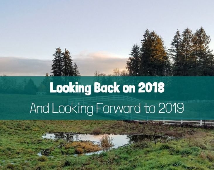 Looking Back on 2018 and Looking Forward to 2019