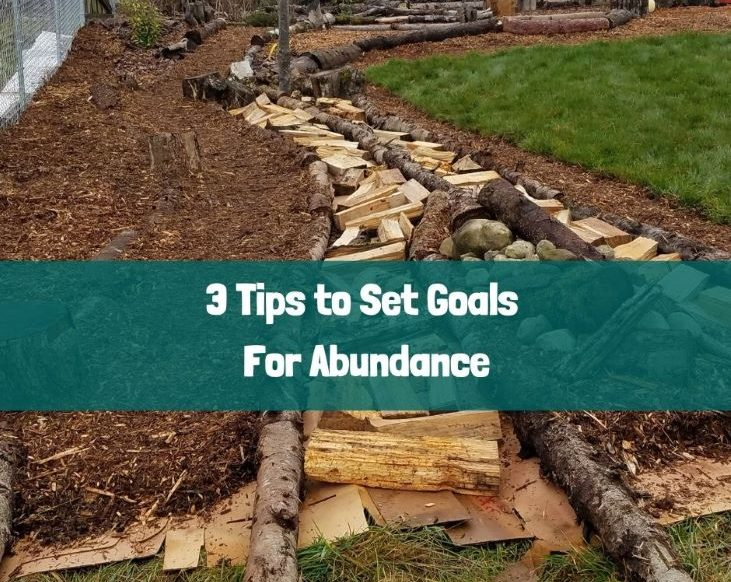 3 Tips to Set Goals for Abundance