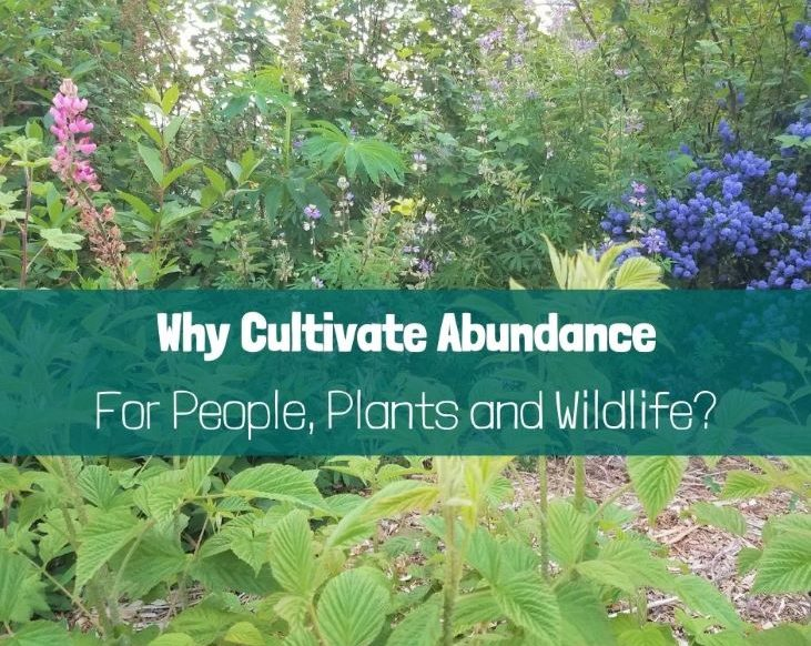 Why Cultivate Abundance for People, Plants & Wildlife?
