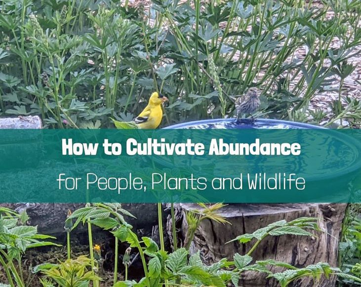 Time to grow with nature -- 5 pathways to abundance