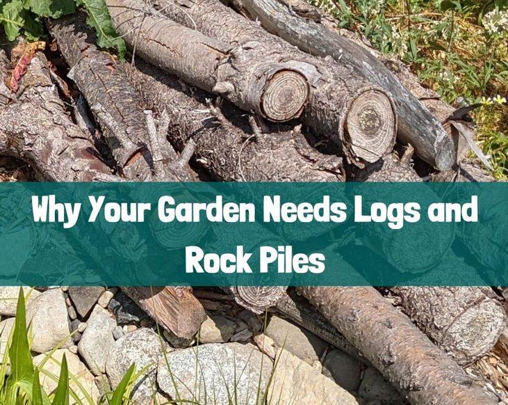 Your garden needs logs and rock piles