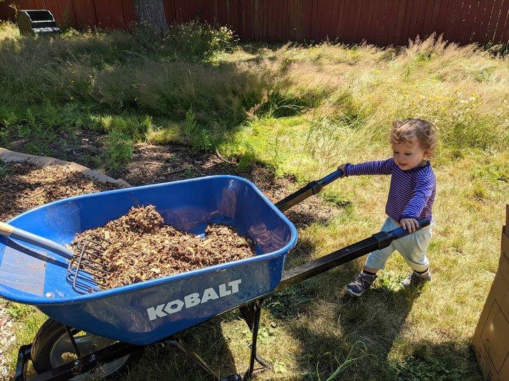 You should mulch your soil to build abundance
