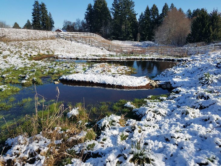 Use water to create warm micro-climates in winter and cool micro-climates in summer